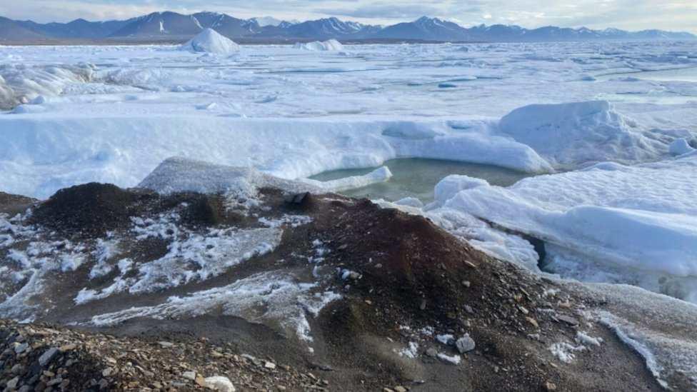 """La isla más septentrional del planeta que los científicos afirman haber descubierto """"por accidente"""" - Prensa Libre"""