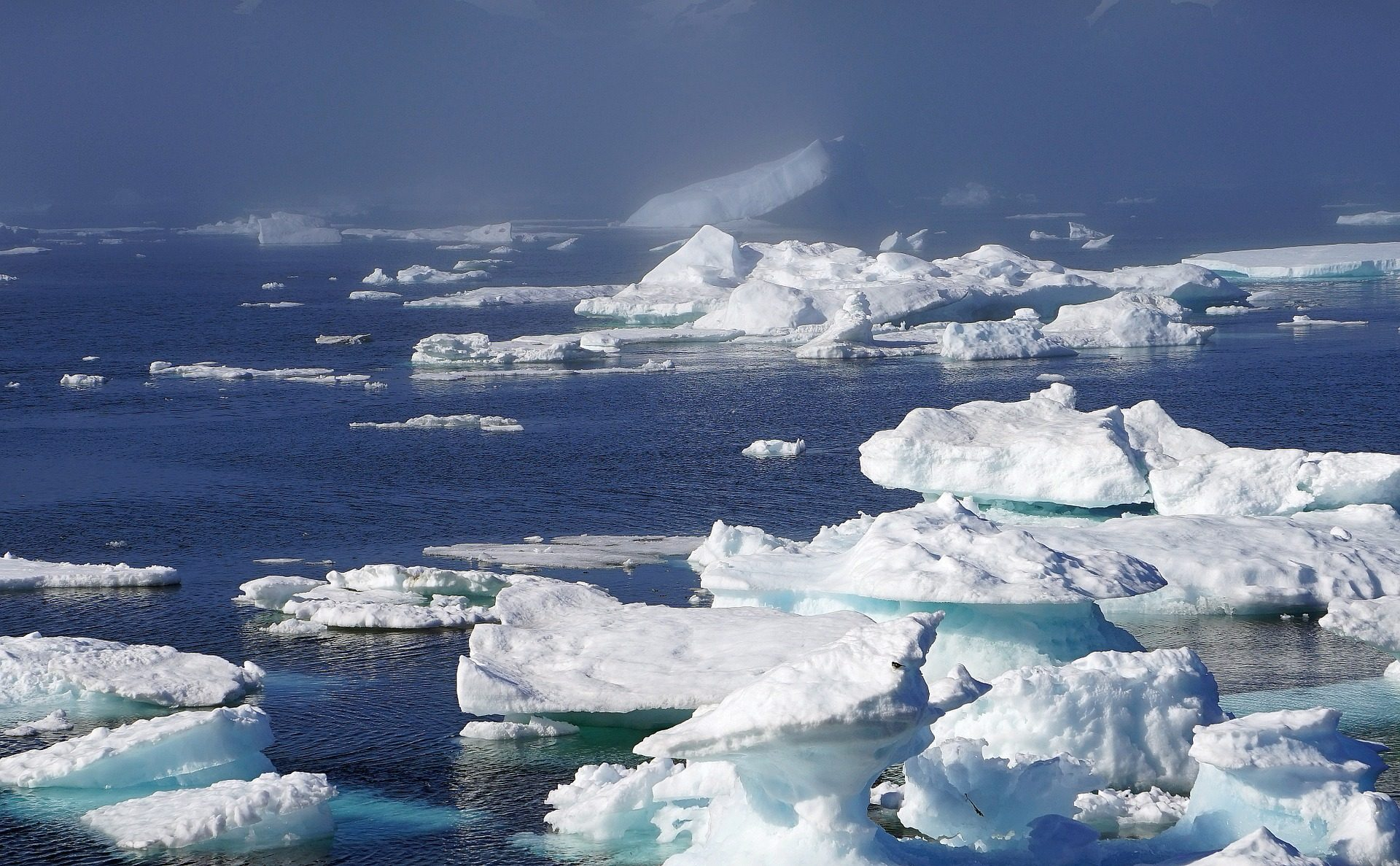 Llueve en Groenlandia por primera vez en más de 70 años (por qué esto preocupa a los científicos) - Prensa Libre