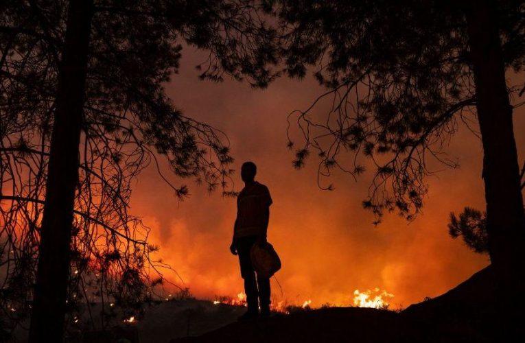 «Mi hijo estaba tratando de ayudar a la zona que amaba … y lo quemaron vivo» – Prensa Libre