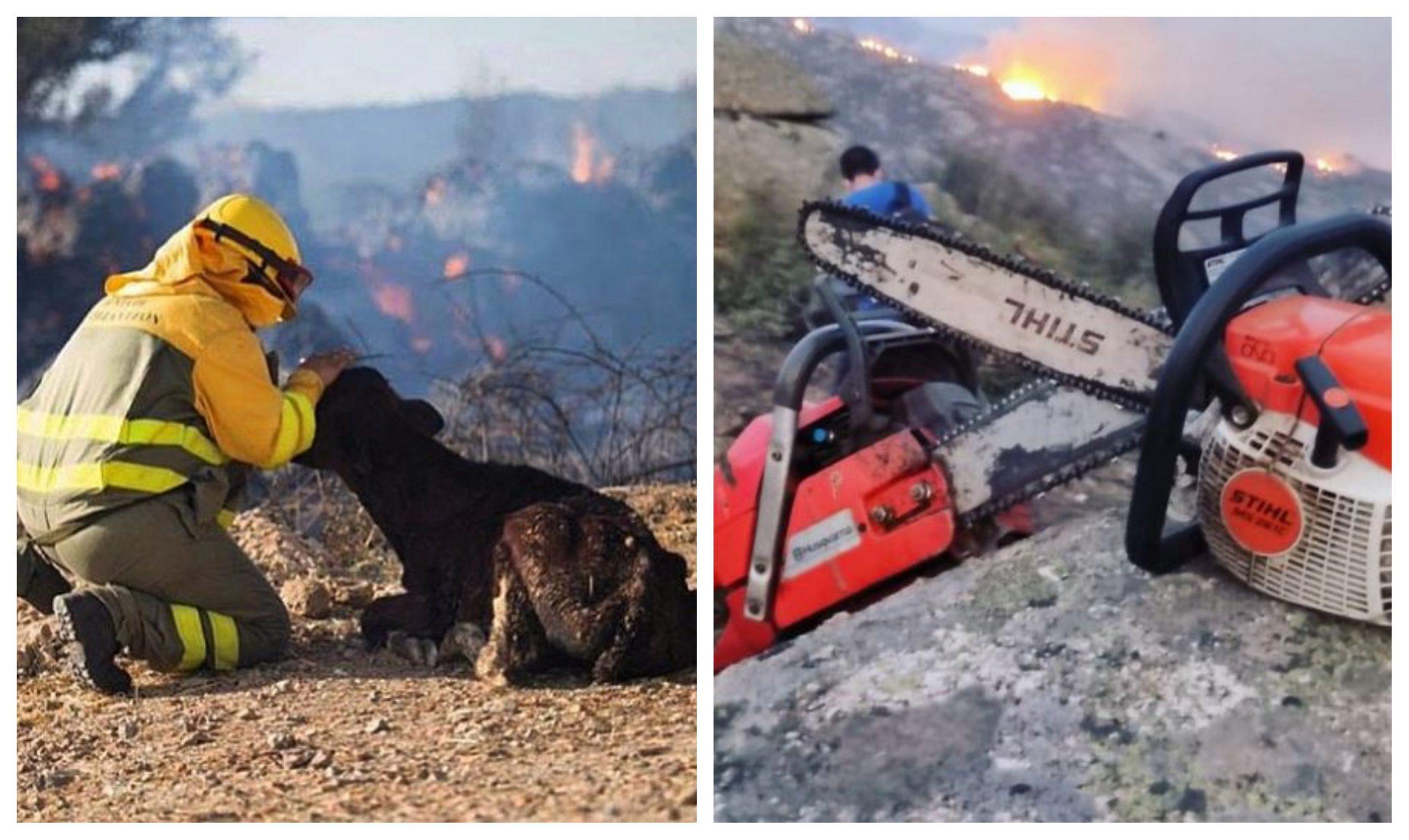 Trabajos para apagar el fuego en Ávila - Prensa Libre