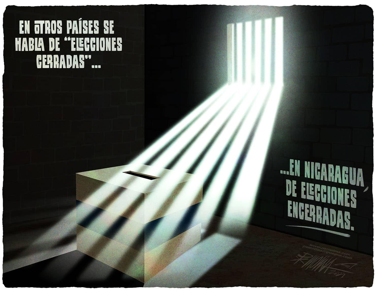Caricatura del día    Elecciones secuestradas