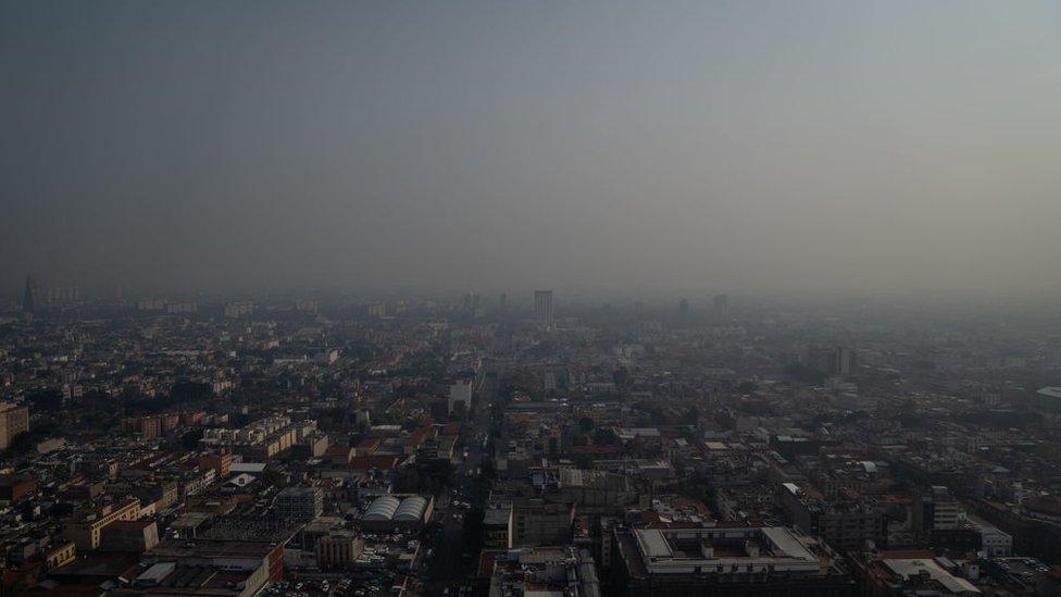 Por que el aire que respiras que se consideraba seguro ya no lo es, según la OMS - Prensa Libre